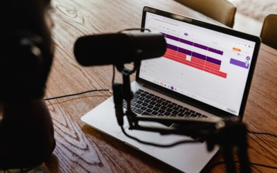 Digitaler Content in der (mehr)sprachlichen Bildung